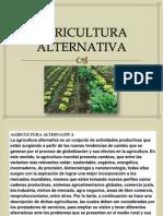 Presentacion Agricultura Alternativa