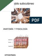 Patología quirúrgica de la  piel y tejido subcutáneo