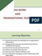 Transnational Team