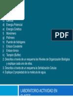 LAB-ACTIVIDAD EN CLASES BASES BIOLÓGICAS (CUESTIONARIO)