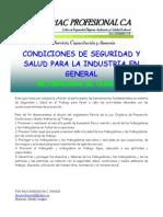 Condiciones de Seguridad y Salud Para La Industria en General