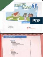 PRIMEROS PASOS 1.pdf