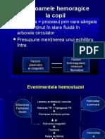 b.sindroame Hemoragice