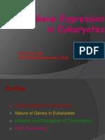 EukarTranscriion
