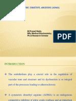 ASYMMETRIC DIMETHYL ARGININE (ADMA)