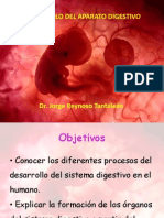 Embriologia07 Aparato Digestivo-USMP [Reparado]