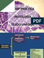 Usmp Practica 5 - Histologia 2014 - Tejido Linfoides