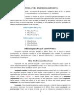 2. Introducere Regnul Protista Sarcodina
