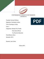 trabajo renzo  sociologia juridica.docx