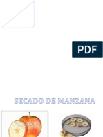 Expo de Secado de Manzana