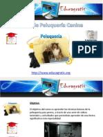 Curso Peluqueria Canina 120801004313 Phpapp02