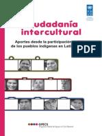 Ciudadania Intercultural