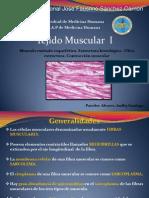 Tejido Muscular I