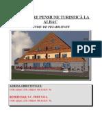 74803906 Studiu de Fezabilitate Doc Iustin Bunnn