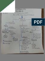 Modelos de enseñanza.docx