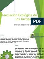 Asociación Ecológica de los Tuxtlas