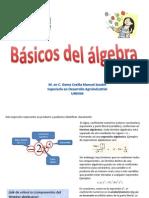 Basicos Del Algebra. UNIVIM