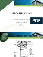 Abdomen Agudo 2013