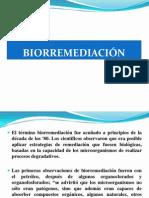 BIORREMEDIACIÒN- MAESTRÌA.ppt