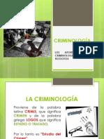 Diapositivas Perlita