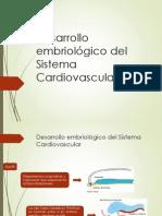 Circulacion Interventricular y Interauricular