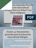 lineamientosgeneralesparalaeducacininterculturalbilingepara-130117161852-phpapp02