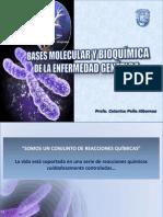 Bases moleculares de la enfermedad genética (Tema #11)