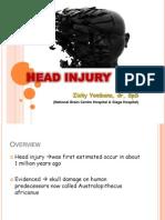 Slide Head Injury Zicky