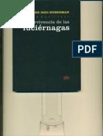 George Didi Huberman - La Supervivencia de Las Luciernagas_cropped