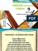Organisasi Struktur Tubuh
