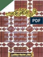 Sharha Chehal Kaf by Faiz Ahmad Owaisi