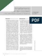 Amarrillamiento Letal REVISTA UVG No. 15-90-99
