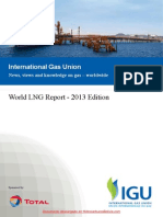 World LNG Report 2013