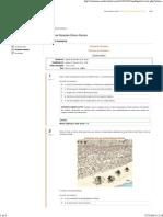 Respostas_ Atividade Avaliativa_Oficina de Relações Étnico-Raciais