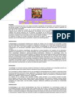 RAMAS DE CIENCIAS SOCIALES.docx
