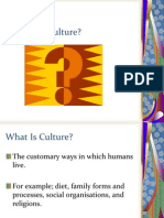 New Culture Industries