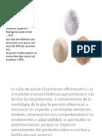 Composición Morfológica y Quimica del Azucar