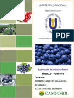 Exportacion de Arandano Fresco (1)