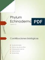 echinodermata 1