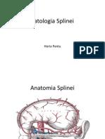 Patologia Splinei