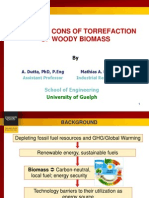 Torrefaction - Pros and Cons by Mathias Leon UoG