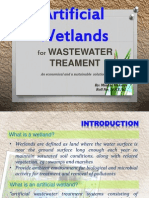 Artificial Wetlands