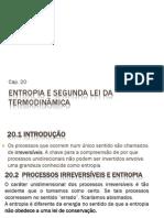 20 Entropia