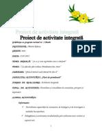 Proiect de activitate integrată