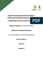COLEGIO DE BACHILLERES DEL ESTADO DE MÉXICO