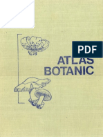 Atlas Botanic - Lucia Popovici