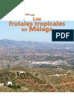 Frutales Subtropicales en Malaga