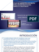 Clinica II Indices