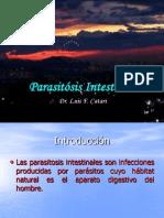 Parasitosis Intestinal 120915163820 Phpapp01
