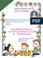 DESARROLLO PRENATAL.docx